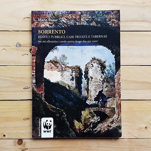 Sorrento. Edifici pubblici, case private e tabernae tra età ellenistica e tardo-antico lungo due assi viari | Collana Athena di con-fine